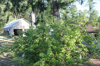 Photo 52: 3306 MACAULAY Rd in : CV Merville Black Creek Single Family Detached for sale (Comox Valley)  : MLS®# 851634