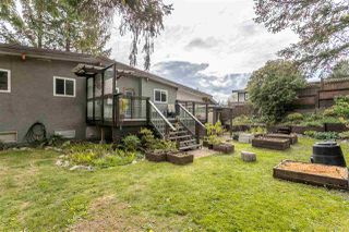 Photo 19: 32169 14TH Avenue in Mission: Mission BC House for sale : MLS®# R2452475