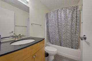 Photo 37: 11216 79 Street in Edmonton: Zone 09 House for sale : MLS®# E4216466