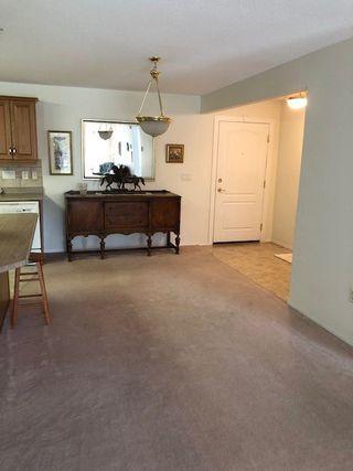 Photo 6: 215 8942 156 Street in Edmonton: Zone 22 Condo for sale : MLS®# E4170080