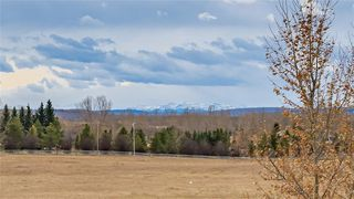 Photo 40: 165 GLYDE Park in Rural Rocky View County: Rural Rocky View MD Detached for sale : MLS®# C4273848