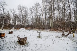 Photo 21: 2 51559 RGE RD 225: Rural Strathcona County House for sale : MLS®# E4180993