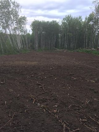 Photo 5: RR 13 Twp 500: Rural Leduc County Rural Land/Vacant Lot for sale : MLS®# E4206440