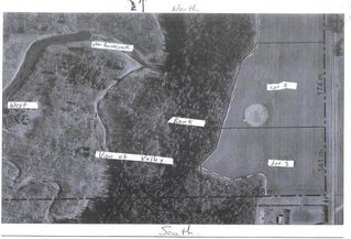 Photo 7: RR 13 Twp 500: Rural Leduc County Rural Land/Vacant Lot for sale : MLS®# E4206440