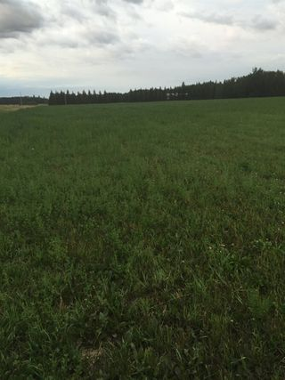 Photo 6: RR 13 Twp 500: Rural Leduc County Rural Land/Vacant Lot for sale : MLS®# E4206440