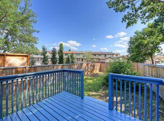 Photo 20: 235 ABOYNE Place NE in Calgary: Abbeydale Semi Detached for sale : MLS®# A1015805