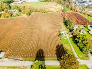 Photo 23: 34141 FARMER Road in Abbotsford: Poplar House for sale : MLS®# R2511876
