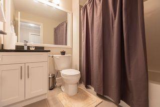 "Photo 30: 27 11252 COTTONWOOD Drive in Maple Ridge: Cottonwood MR Townhouse for sale in ""COTTONWOOD RIDGE"" : MLS®# R2524381"
