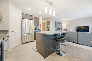 Photo 7: 20516 92 Avenue in Edmonton: Zone 58 House for sale : MLS®# E4186032