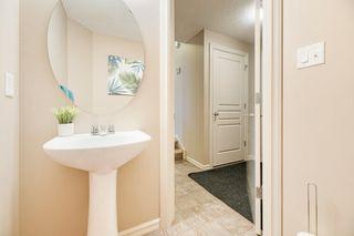 Photo 20: 20516 92 Avenue in Edmonton: Zone 58 House for sale : MLS®# E4186032