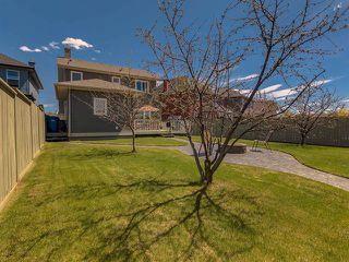 Photo 39: 333 PRESTWICK ESTATE Way SE in Calgary: McKenzie Towne Detached for sale : MLS®# C4296711