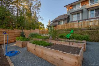 """Photo 28: 5 23651 132 Avenue in Maple Ridge: Silver Valley Townhouse for sale in """"MYRON'S MUSE"""" : MLS®# R2475411"""