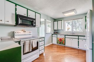 Photo 16: 5715 NORTH HAVEN Drive NW in Calgary: North Haven Upper Detached for sale : MLS®# A1032107
