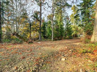 Photo 4: 581 Downey Road in NORTH SAANICH: NS Deep Cove Land for sale (North Saanich)  : MLS®# 419568