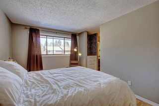 Photo 23: 124 HEARTHSTONE Road in Edmonton: Zone 14 Townhouse for sale : MLS®# E4193246