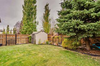 Photo 43: 548 Auburn Bay Heights SE in Calgary: Auburn Bay Detached for sale : MLS®# A1041418