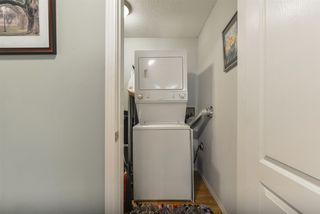 Photo 20:  in Edmonton: Zone 22 Condo for sale : MLS®# E4172883