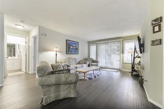 Photo 8:  in Edmonton: Zone 22 Condo for sale : MLS®# E4172883