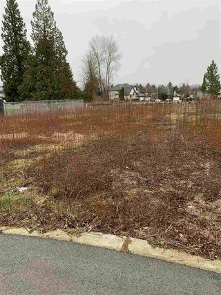 Photo 2: 9840 179 Street in Surrey: Fraser Heights Land for sale (North Surrey)  : MLS®# R2443237