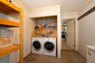 Photo 34: 20820 STONEY Avenue in Maple Ridge: Southwest Maple Ridge House for sale : MLS®# R2471486