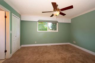 Photo 18: 20820 STONEY Avenue in Maple Ridge: Southwest Maple Ridge House for sale : MLS®# R2471486