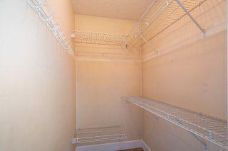 Photo 21: 20820 STONEY Avenue in Maple Ridge: Southwest Maple Ridge House for sale : MLS®# R2471486