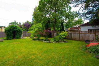Photo 40: 20820 STONEY Avenue in Maple Ridge: Southwest Maple Ridge House for sale : MLS®# R2471486