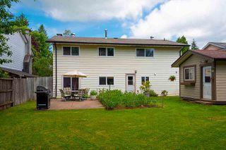 Photo 35: 20820 STONEY Avenue in Maple Ridge: Southwest Maple Ridge House for sale : MLS®# R2471486