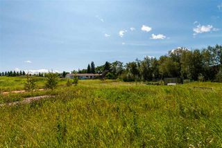 Photo 14: 210 50450 RGE RD 233: Rural Leduc County House for sale : MLS®# E4211651