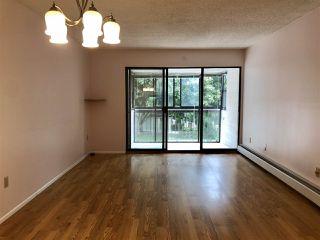 Main Photo: 309 5791 GRANVILLE Avenue in Richmond: Riverdale RI Condo for sale : MLS®# R2494042