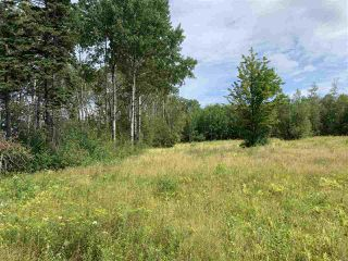 Photo 4: Lot 4 Granton Abercrombie Road in Granton: 108-Rural Pictou County Vacant Land for sale (Northern Region)  : MLS®# 201920570
