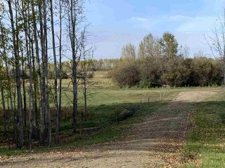 Photo 4: Twp. 545 & Rg. Rd. 275: Rural Sturgeon County Rural Land/Vacant Lot for sale : MLS®# E4175911
