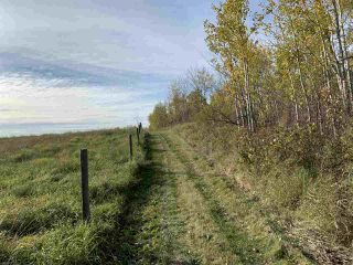 Photo 10: Twp. 545 & Rg. Rd. 275: Rural Sturgeon County Rural Land/Vacant Lot for sale : MLS®# E4175911