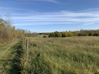 Photo 12: Twp. 545 & Rg. Rd. 275: Rural Sturgeon County Rural Land/Vacant Lot for sale : MLS®# E4175911