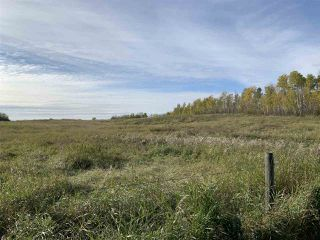 Photo 9: Twp. 545 & Rg. Rd. 275: Rural Sturgeon County Rural Land/Vacant Lot for sale : MLS®# E4175911