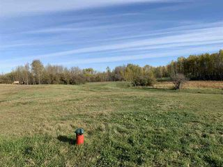 Photo 20: Twp. 545 & Rg. Rd. 275: Rural Sturgeon County Rural Land/Vacant Lot for sale : MLS®# E4175911