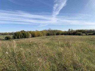 Photo 11: Twp. 545 & Rg. Rd. 275: Rural Sturgeon County Rural Land/Vacant Lot for sale : MLS®# E4175911
