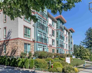 "Photo 33: 306 33485 SOUTH FRASER Way in Abbotsford: Central Abbotsford Condo for sale in ""CITADEL RIDGE"" : MLS®# R2496142"