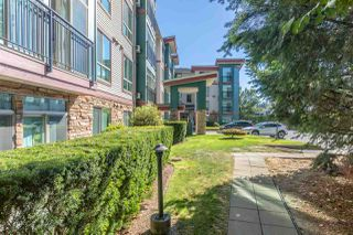 "Photo 31: 306 33485 SOUTH FRASER Way in Abbotsford: Central Abbotsford Condo for sale in ""CITADEL RIDGE"" : MLS®# R2496142"