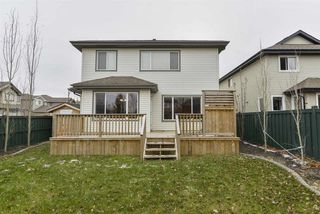 Photo 43: 12606 16A Avenue in Edmonton: Zone 55 House for sale : MLS®# E4178746