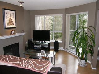 Photo 2: 313 2551 PARKVIEW Lane in Port Coquitlam: Home for sale : MLS®# V925589