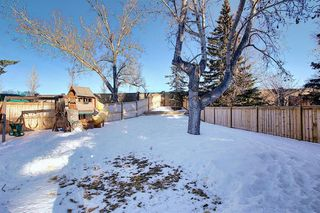 Photo 49: 15 Silvergrove Crescent NW in Calgary: Silver Springs Detached for sale : MLS®# A1059145