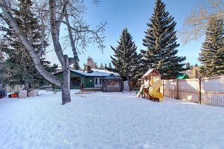 Photo 50: 15 Silvergrove Crescent NW in Calgary: Silver Springs Detached for sale : MLS®# A1059145