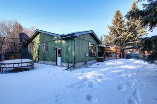 Photo 48: 15 Silvergrove Crescent NW in Calgary: Silver Springs Detached for sale : MLS®# A1059145