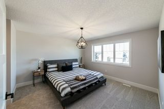 Photo 19: 17 Edison Drive: St. Albert House for sale : MLS®# E4173577