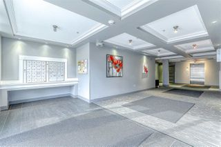 """Photo 4: 304 2349 WELCHER Avenue in Port Coquitlam: Central Pt Coquitlam Condo for sale in """"ALTURA"""" : MLS®# R2435441"""