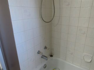Photo 17: 312 KLINE Crescent in Edmonton: Zone 29 House for sale : MLS®# E4199049