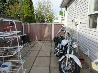 Photo 28: 312 KLINE Crescent in Edmonton: Zone 29 House for sale : MLS®# E4199049