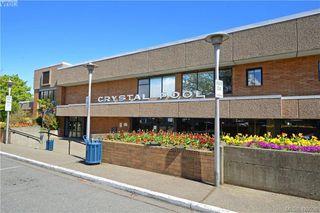 Photo 24: 919 Empress Avenue in VICTORIA: Vi Central Park Single Family Detached for sale (Victoria)  : MLS®# 426936