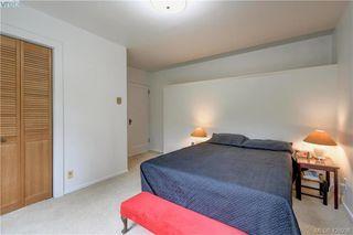 Photo 9: 919 Empress Avenue in VICTORIA: Vi Central Park Single Family Detached for sale (Victoria)  : MLS®# 426936